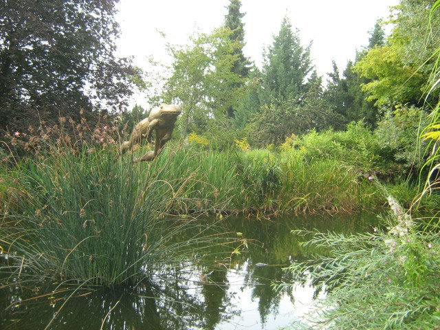 В Ботаническом саду Праги