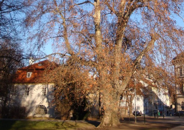 Дом Йозефа Добровского - Вилла Вериха (Dům Josefa Dobrovského - Werichova vila)