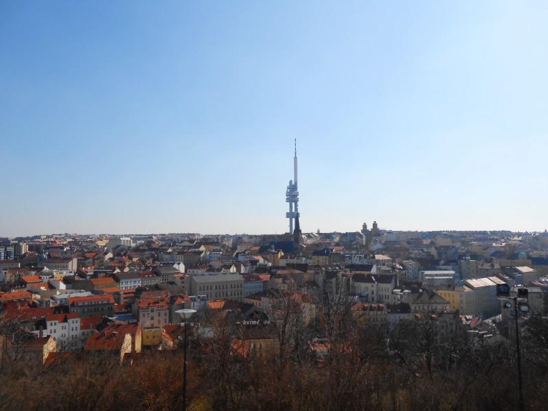 Вид с холма Витков