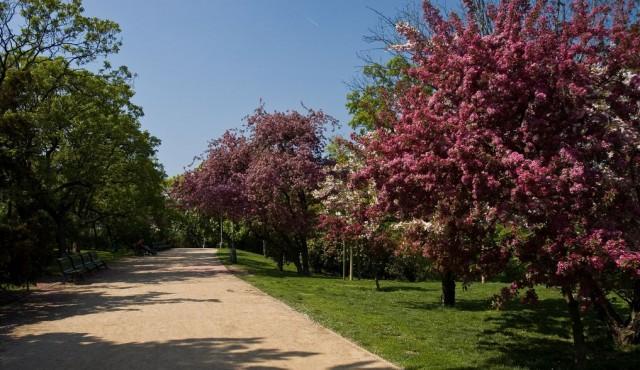 Риегровы сады (Riegrovy sady)