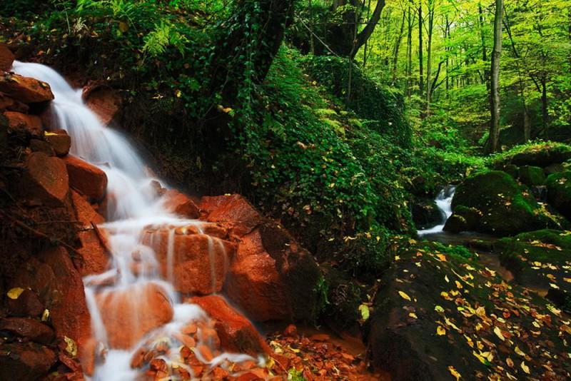 Ручей Суха Каменице (Suchá Kamenice)