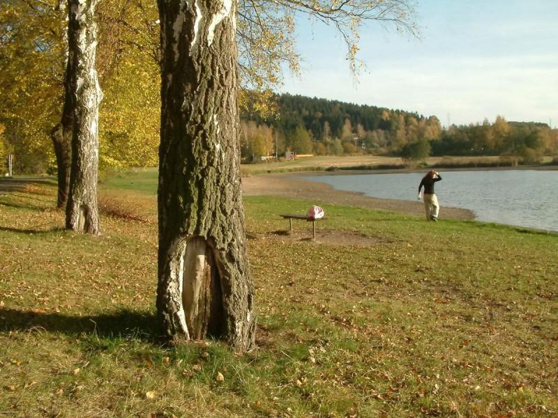 Олешский пруд