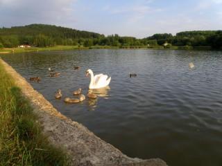 Олешский пруд и Термальный бассейн в Дечине
