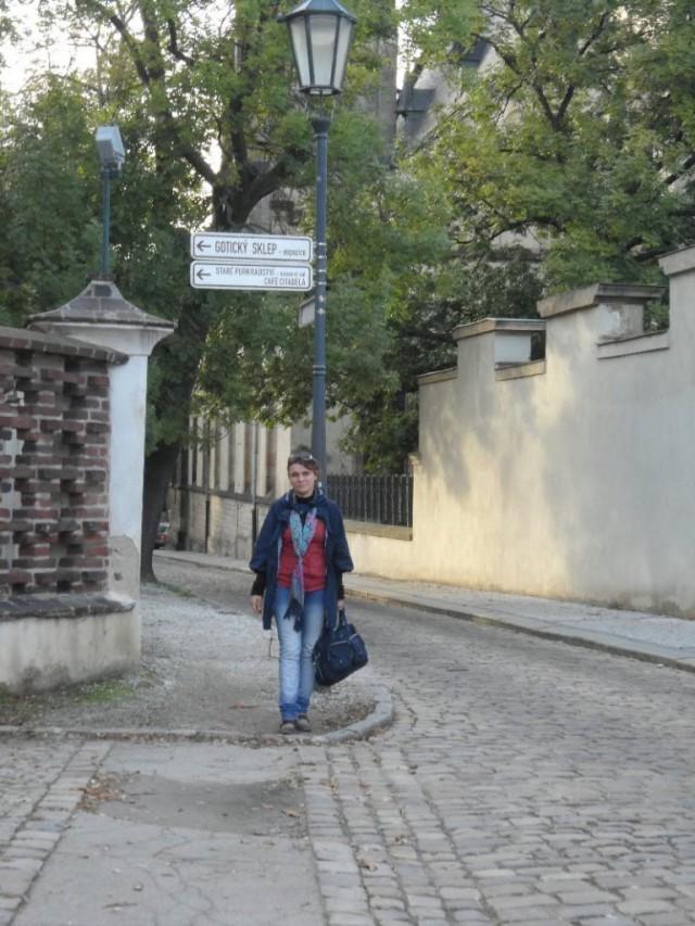 Прогулка по   Вышеграду
