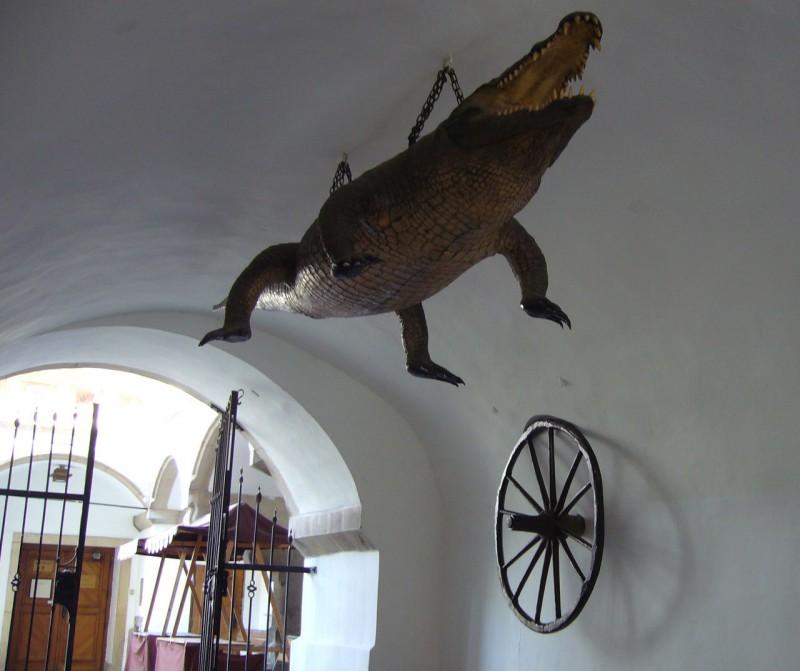 """Старая ратуша. Символы города: колесо и """"дракон"""""""
