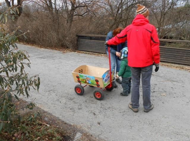 Зима в пражском зоопарке (отчет Андрея)