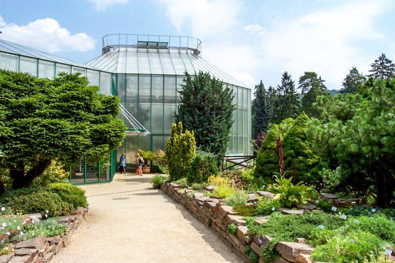 Ботанический сад (Botanická zahrada)