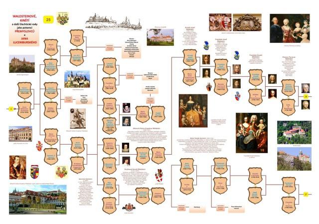 Генеалогическое древо Вальдштейов, Кински и других благородных  семей
