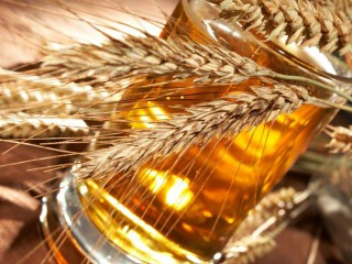 Как пиво влияет на здоровье? Популярные «пивные» мифы и их разоблачение