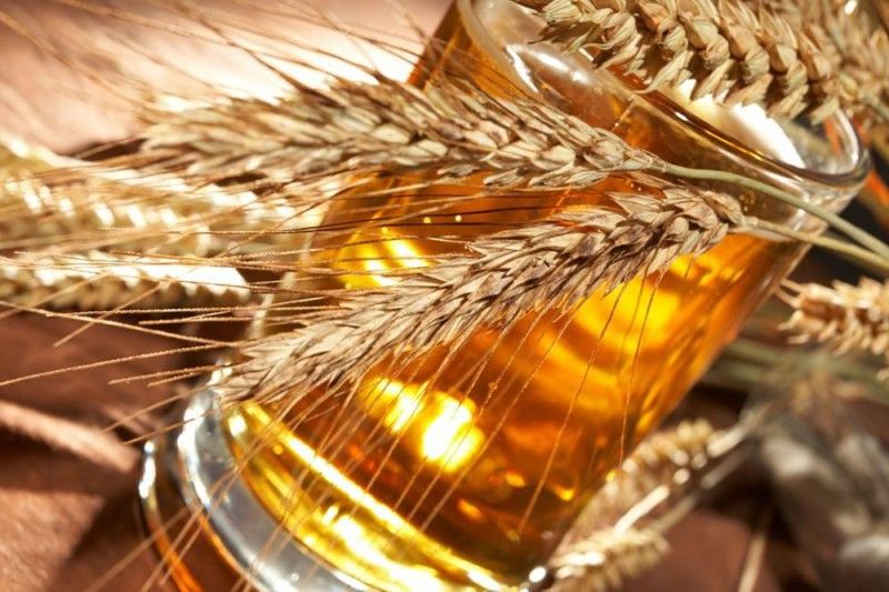Секреты пражских пивоваров
