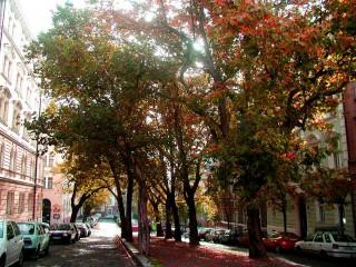 Исторический район Винограды – тихое место в центре чешской столицы