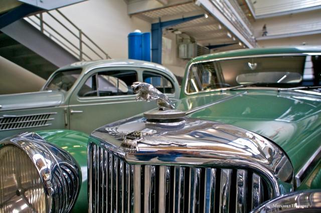 Jaguar – шик и блеск