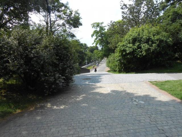 Эта дорога из Розового сада приведет вас в Сады Кинских