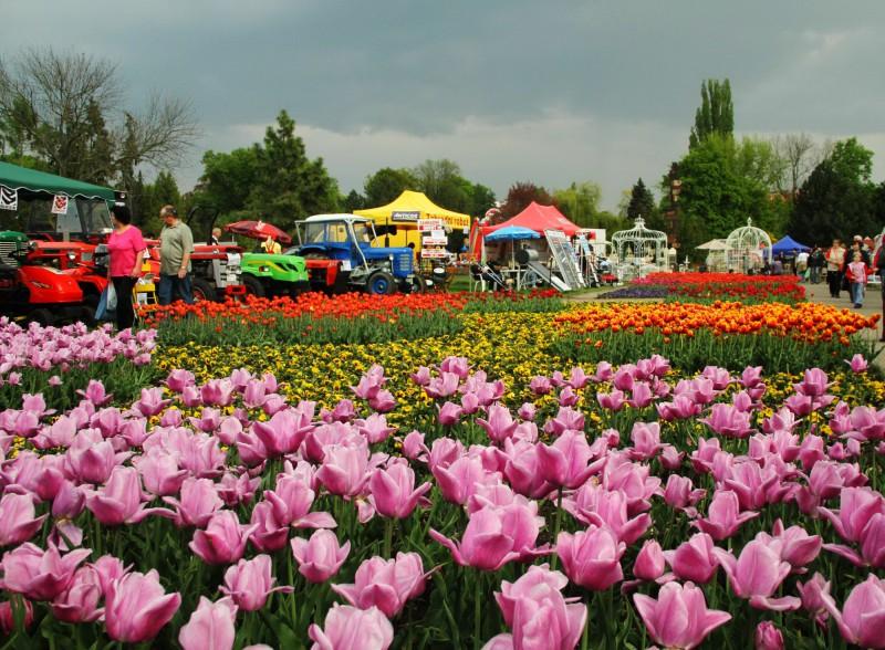 На фестивале Flora Olomouc