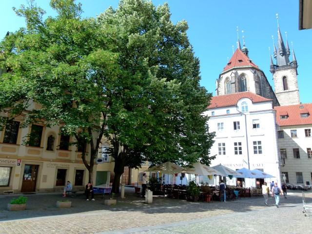 Тынский двор (Týnský dvůr)