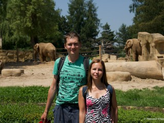 Зоопарк  Двур-Кралове – филиал Африки