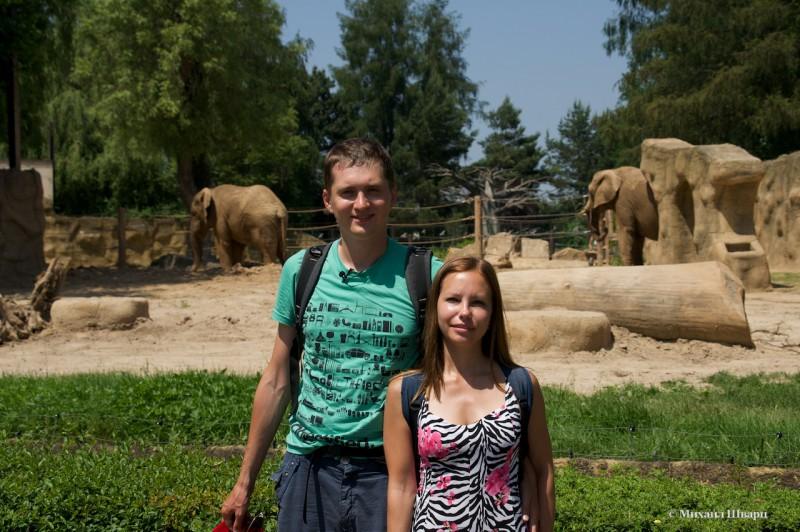Мы в зоопарке  Двур-Кралове