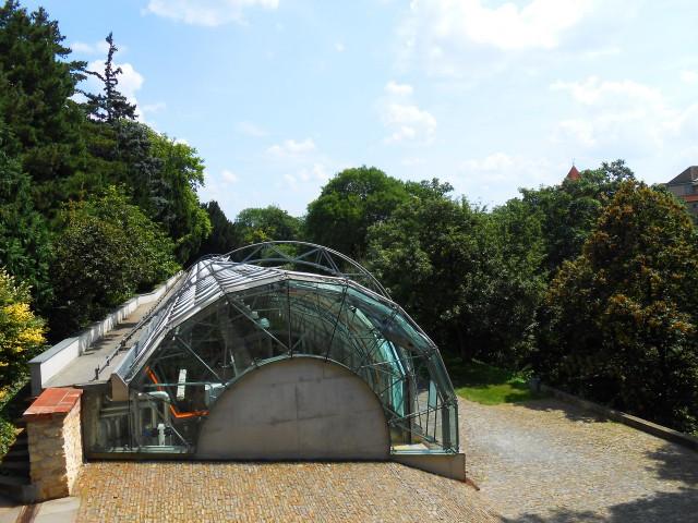 Оранжерея в Королевском саду