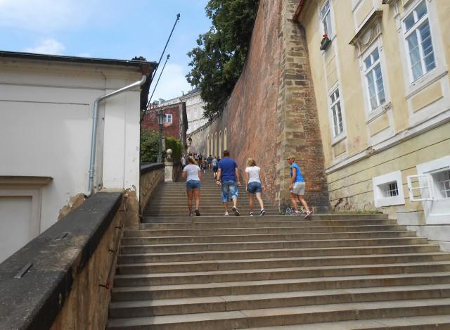 В Новой Замковой лестнице 208 каменных ступеней