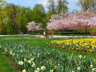 Весна в Чехии