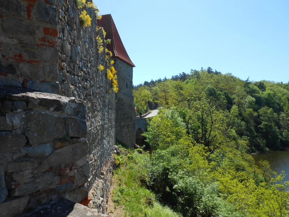 Весна в замке