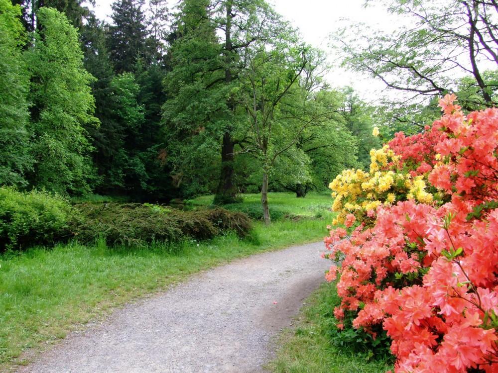 Пругоницкий замок и парк