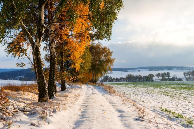 Чешская Сибирь - сказочное высокогорье на границе Центральной Богемии