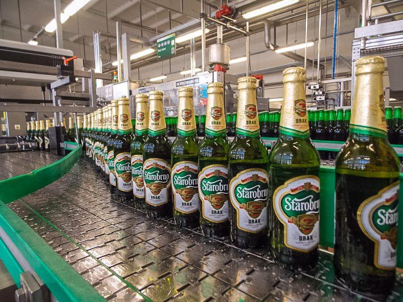 Пиво Starobrno