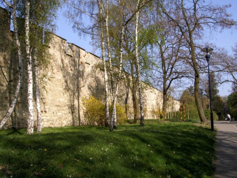 Вид на стену