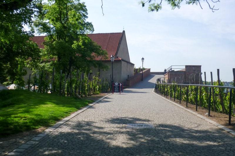 Старое бургграфство и смотровая площадка