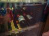 Пивовар Pegas в Брно 16